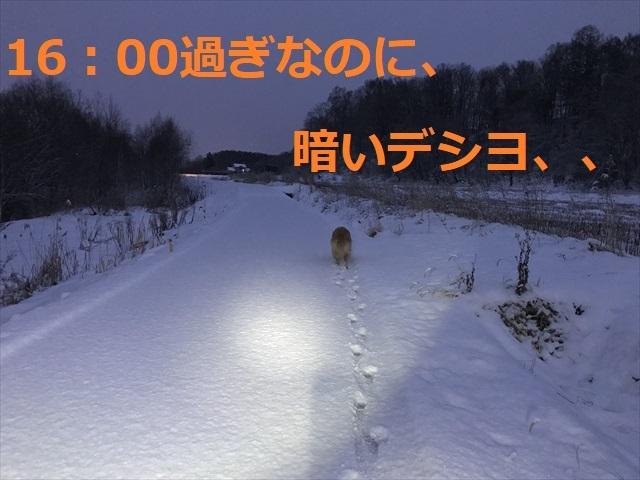 IMG_5477_PPP.jpg