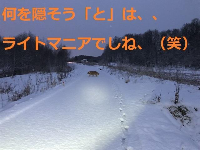 IMG_5479_PPP.jpg