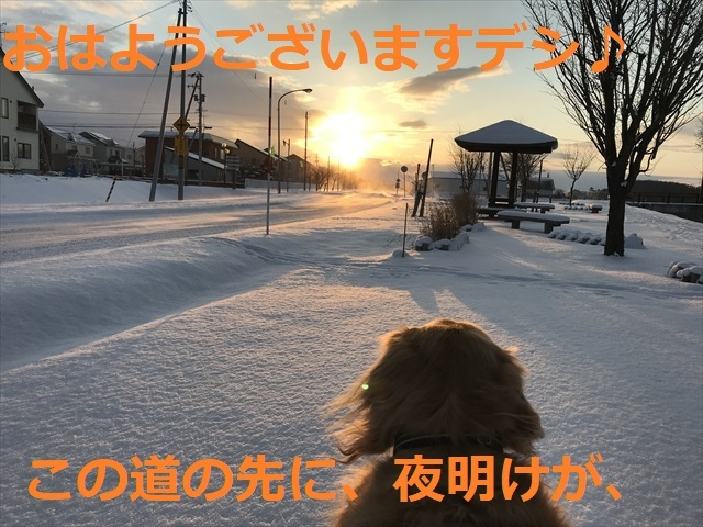 IMG_5602_PPP.jpg