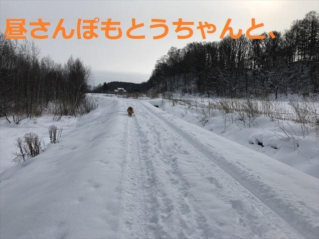 IMG_6188_PPP.jpg