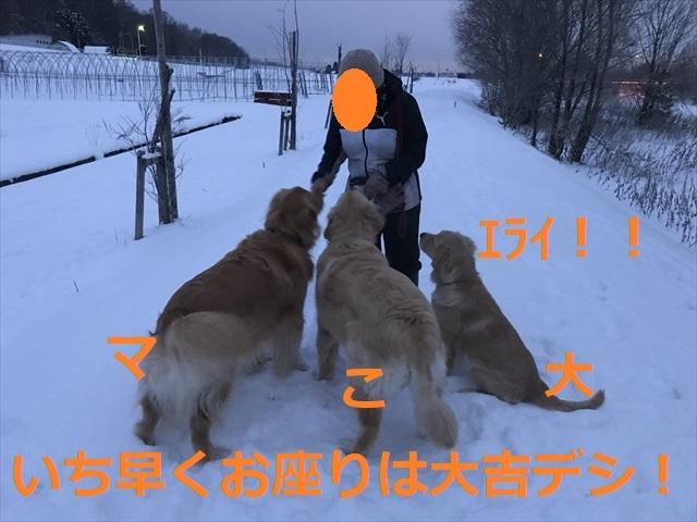 IMG_6256_PPP.jpg