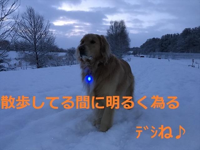IMG_6269_PPP.jpg