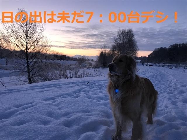 IMG_6947_PPP.jpg