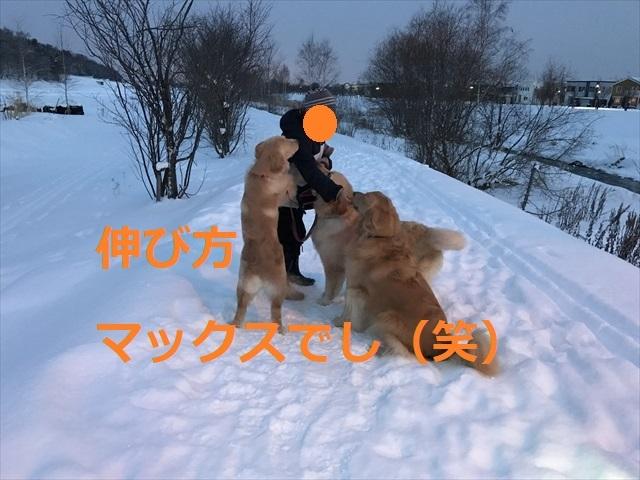 IMG_6980_PPP.jpg