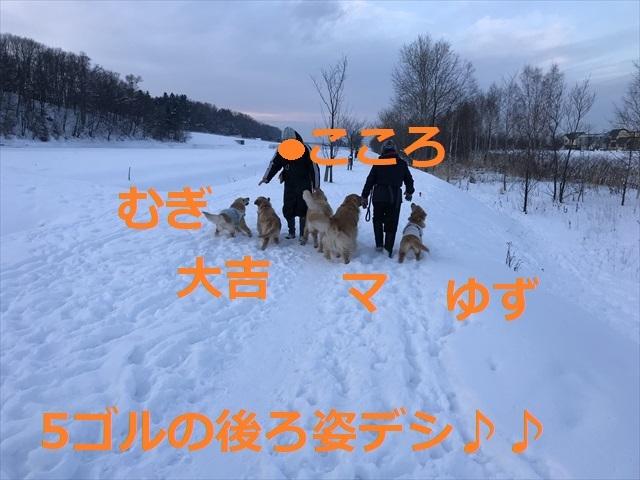 IMG_7197_PPP_20200119235305ff9.jpg