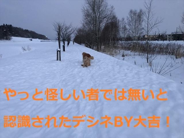 IMG_7352_PPP_20200122205931887.jpg