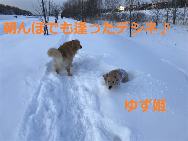 IMG_7586_PPP.jpg