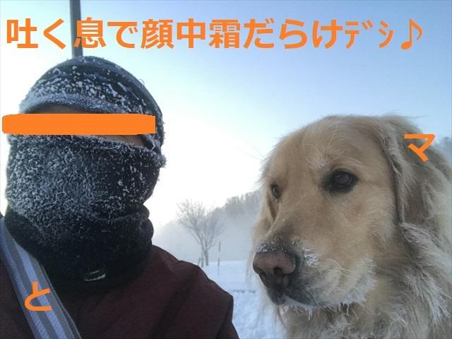 IMG_7713_PPP.jpg