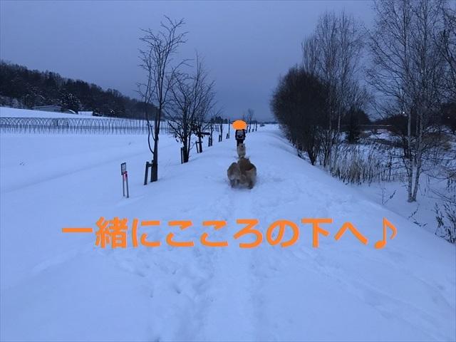 IMG_7766_PPP.jpg