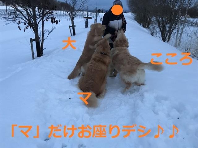 IMG_7793_PPP.jpg