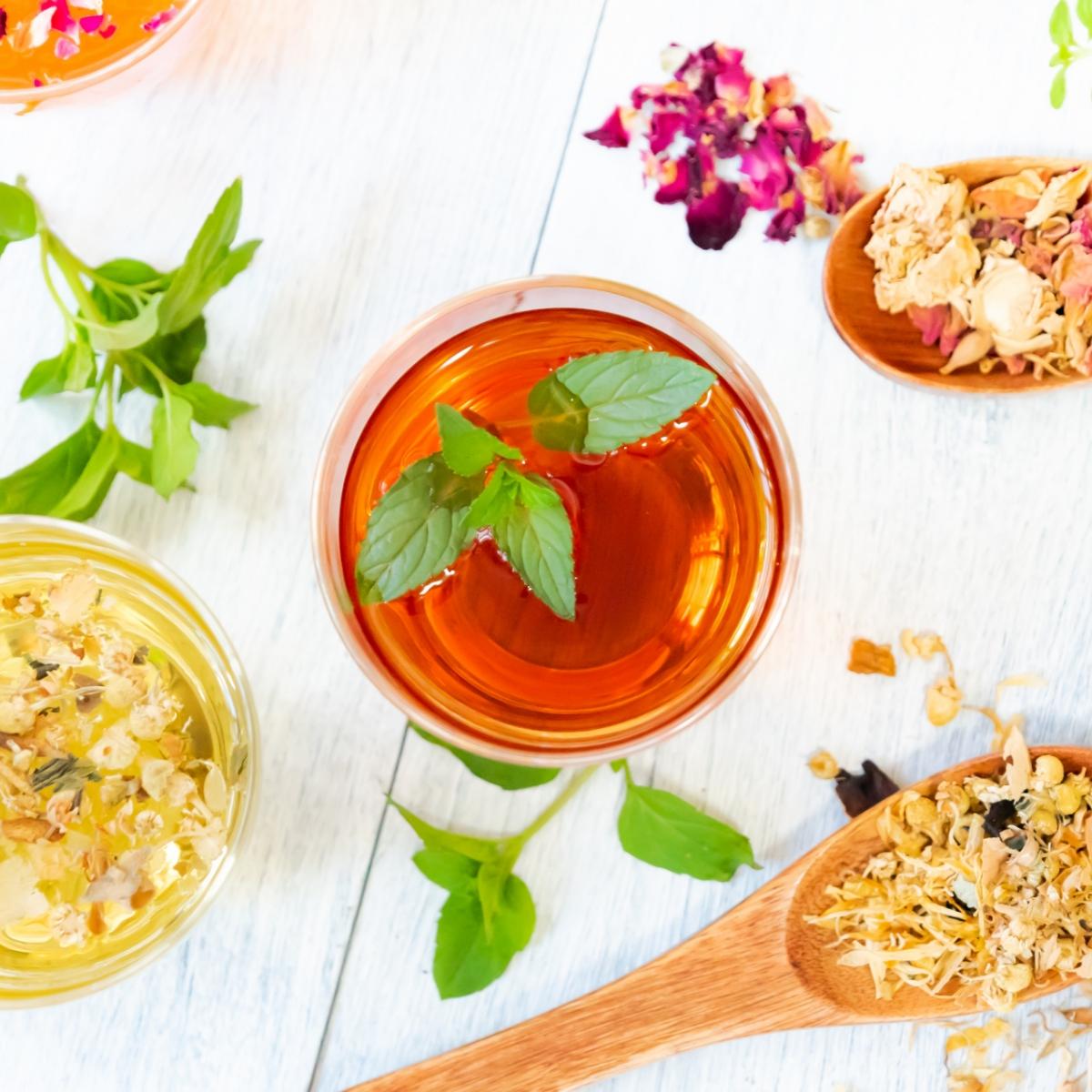イギリス伝統のコーディアルとは。生活の木のおすすめと飲み方&作り方