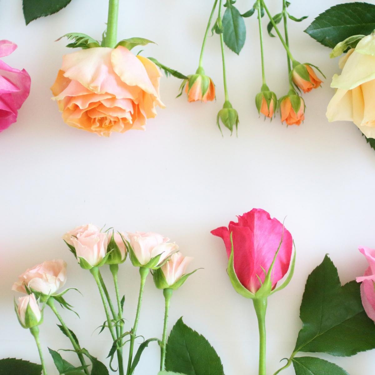 おしゃれなお花屋さん5選!花のある暮らしを始めよう
