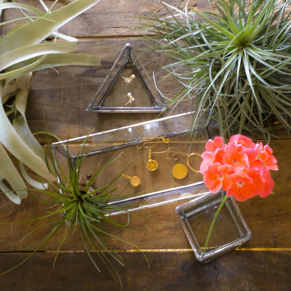 初心者におすすめのインテリアにあうテラリウムの飾り方&容器