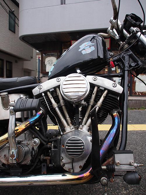 P1250003-2.jpg