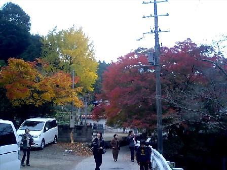 https://blogs.yahoo.co.jp/IMG/ybi/1/24/4d/rumiko_01/folder/696321/img_696321_43872702_0?2006-11-28