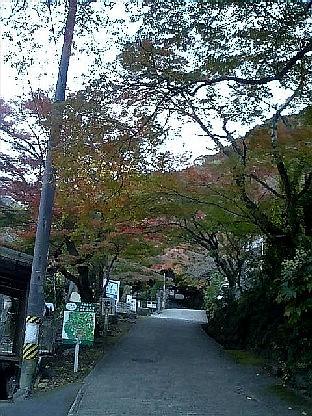 https://blogs.yahoo.co.jp/IMG/ybi/1/24/4d/rumiko_01/folder/696321/img_696321_36066692_2?20060519093626.jpg