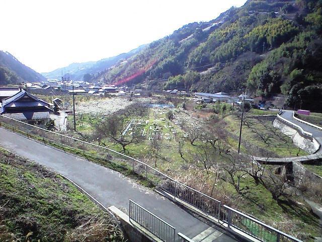 https://blogs.yahoo.co.jp/IMG/ybi/1/24/4d/rumiko_01/folder/696321/img_696321_58612429_3?1235705367