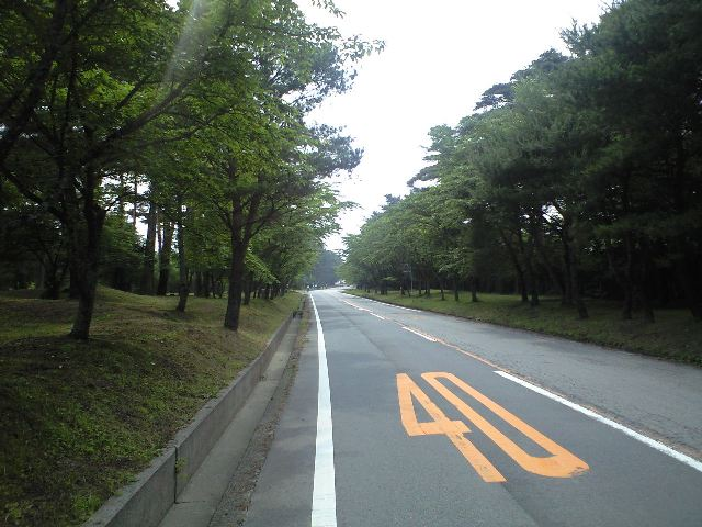 https://blogs.yahoo.co.jp/IMG/ybi/1/24/4d/rumiko_01/folder/493962/img_493962_59884577_5?1246334634