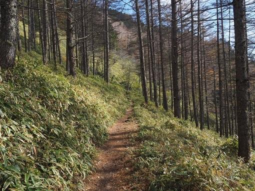 石丸峠への道