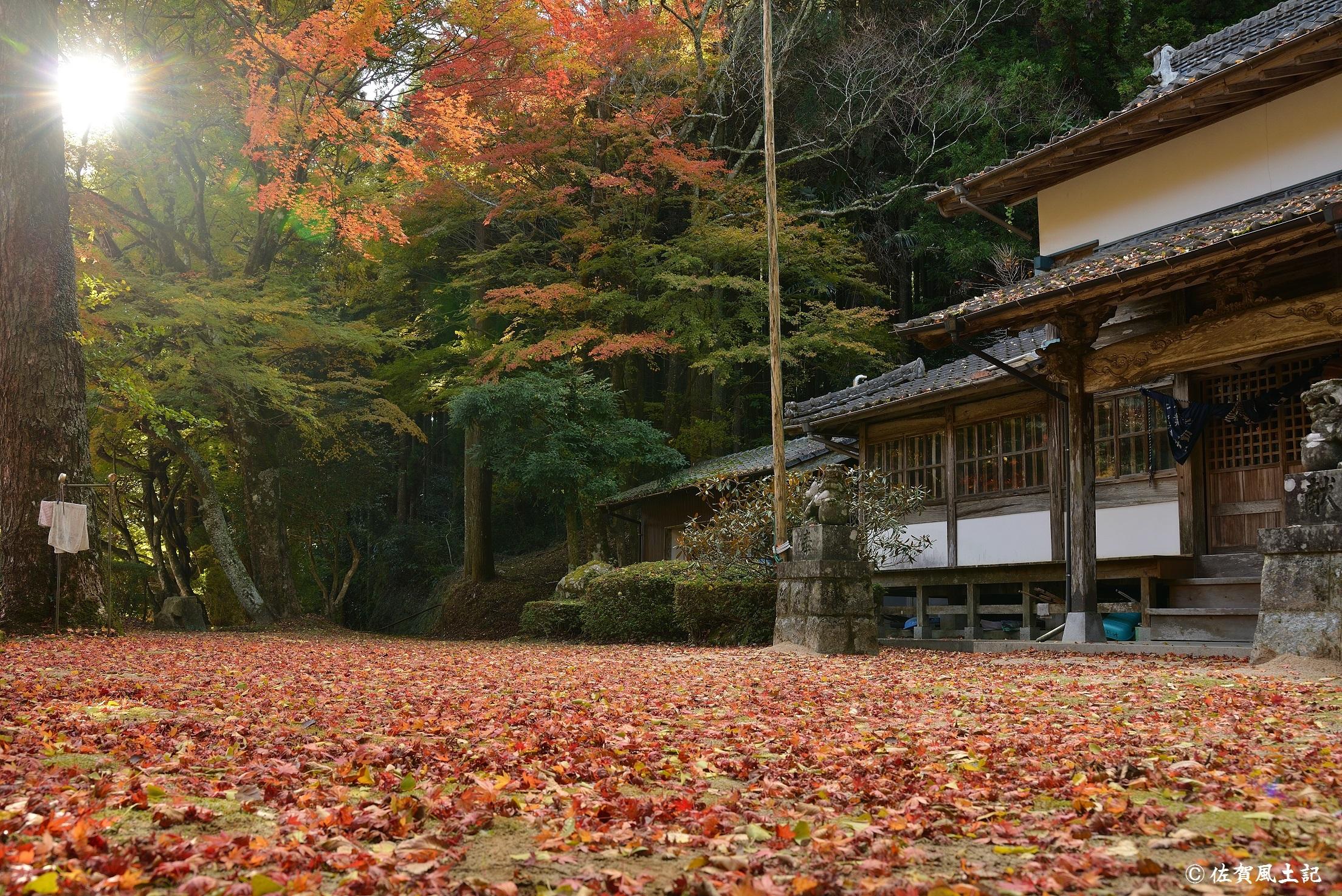 若宮神社①