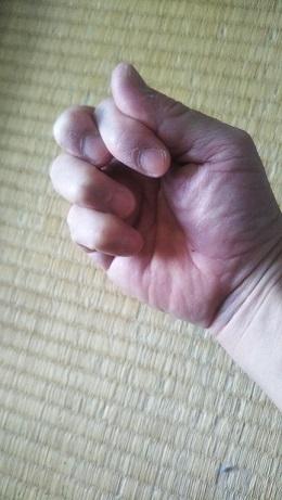 2003_柳生心眼流_拳2