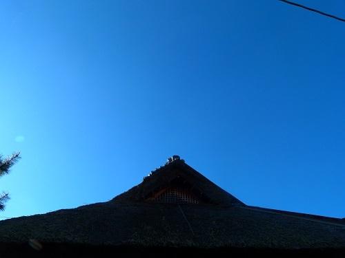 niwa4_201911231449038c2.jpg