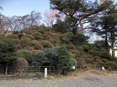 熊野神社内の富士塚