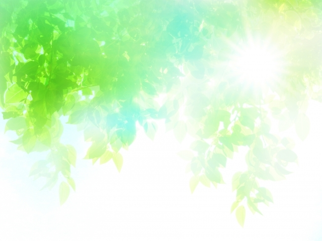 ea73269a5ae315c29f6b0b5aecef6f06_s夏の太陽と新緑木漏れ日