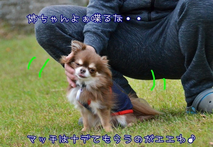 DSC_2103.jpg