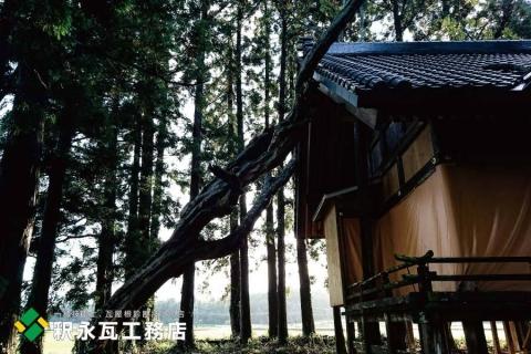 富山県立山 台風倒木被害 屋根瓦