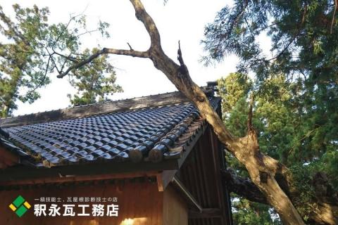 富山県立山 台風倒木被害 瓦屋根