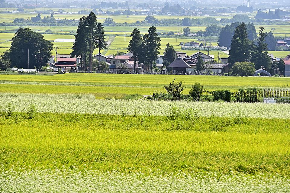 yonezawasyuuraku
