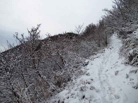 nosakadake011207 (13)