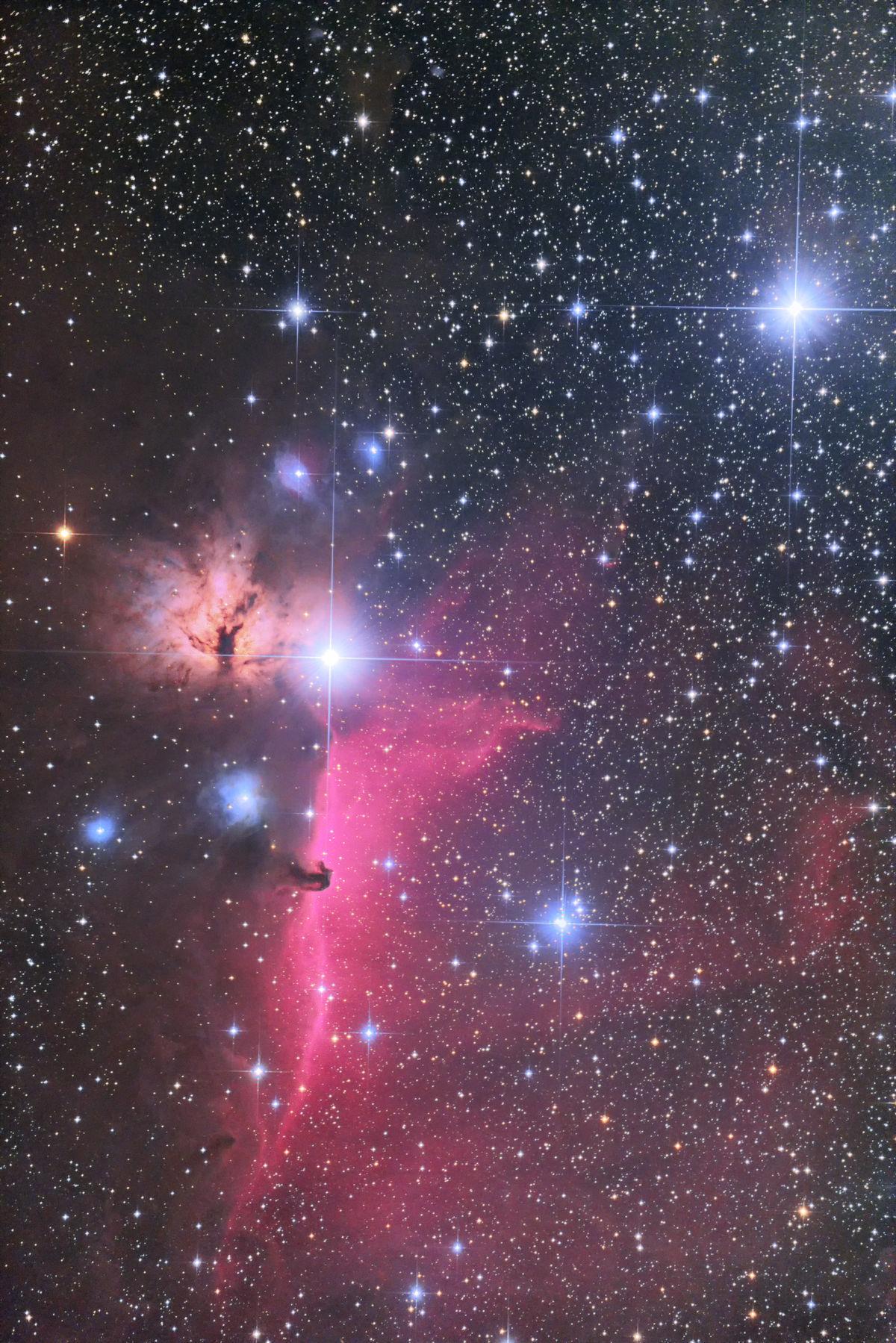【星雲】燃える木 & 馬頭星雲