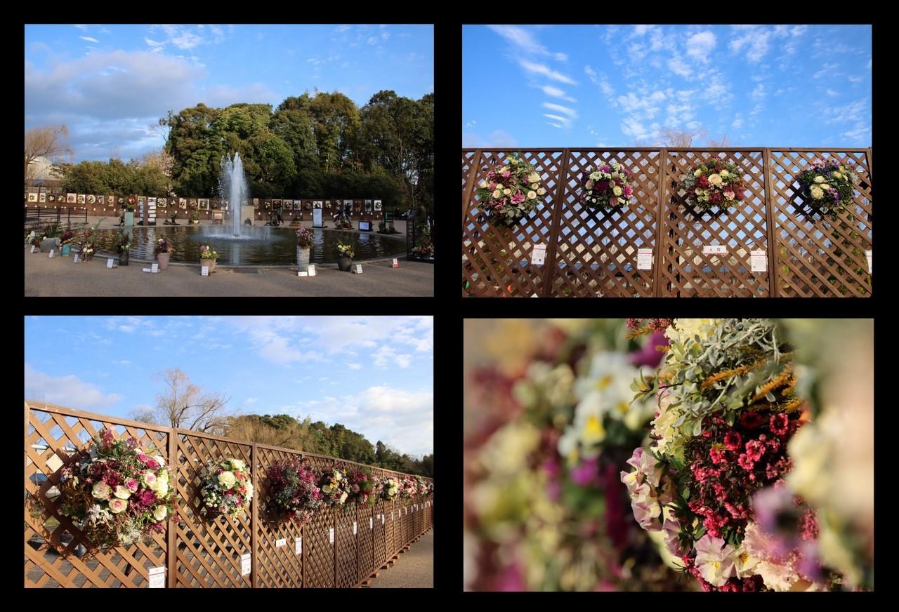 1月24日植物園-1
