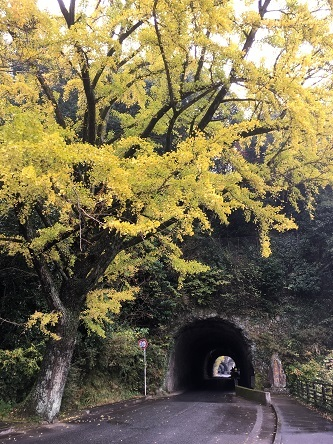 青の洞門1
