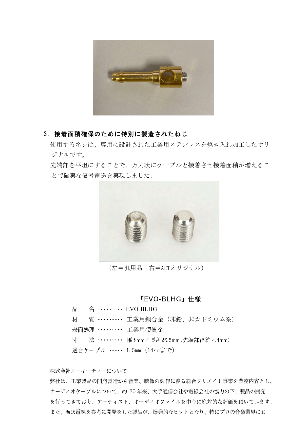 EVO-BLHGリリース_page-0003