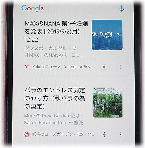 x2891.jpg