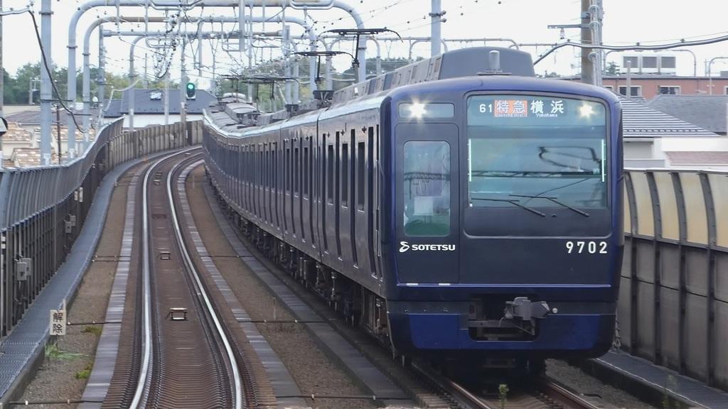 P1180543-1.jpg
