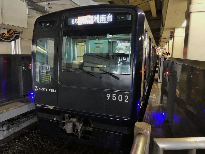 P1180566.jpg