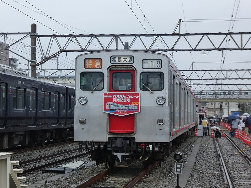 P1180941.jpg