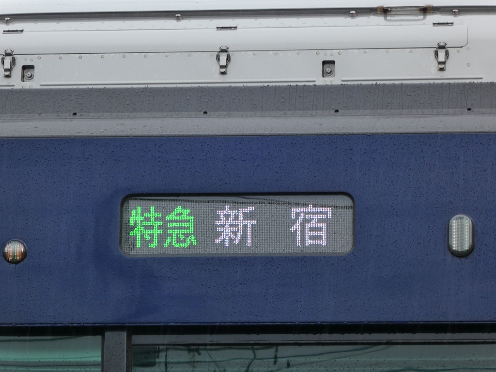 P1180949.jpg