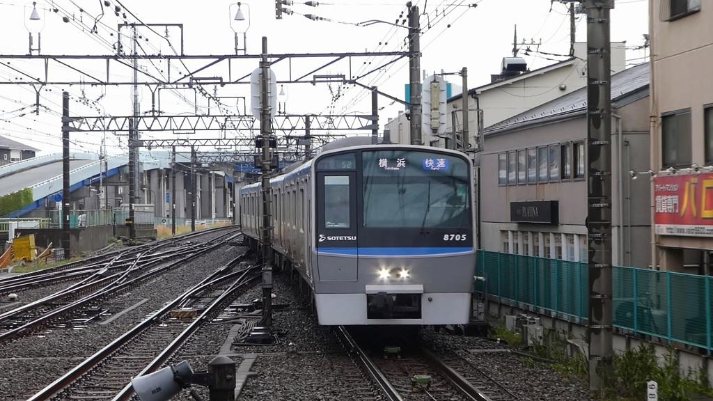 P1190013.jpg