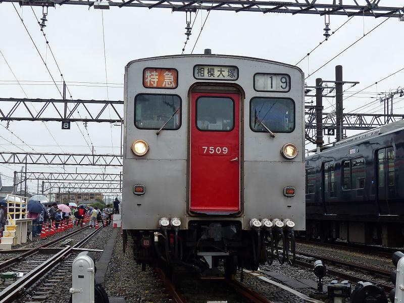 P1440663.jpg