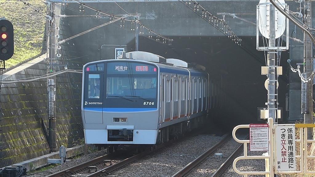 P1440981.jpg