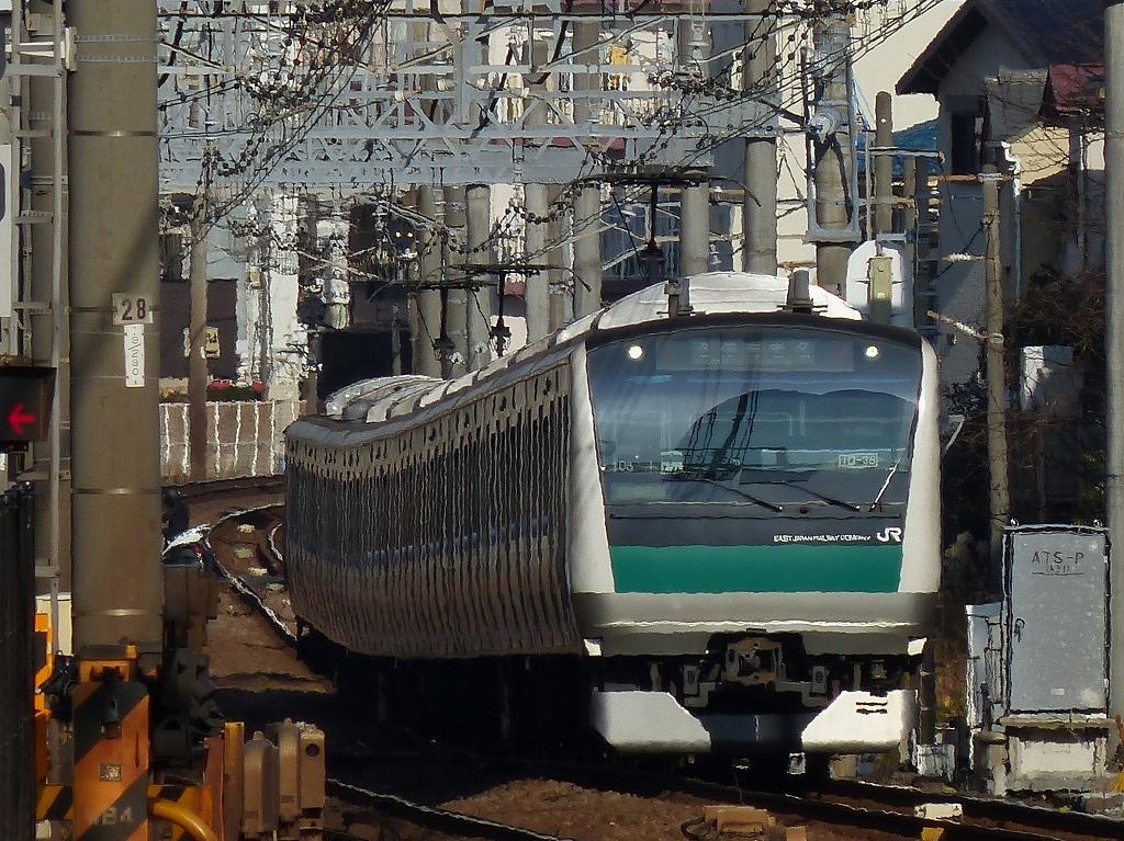 P1450391.jpg
