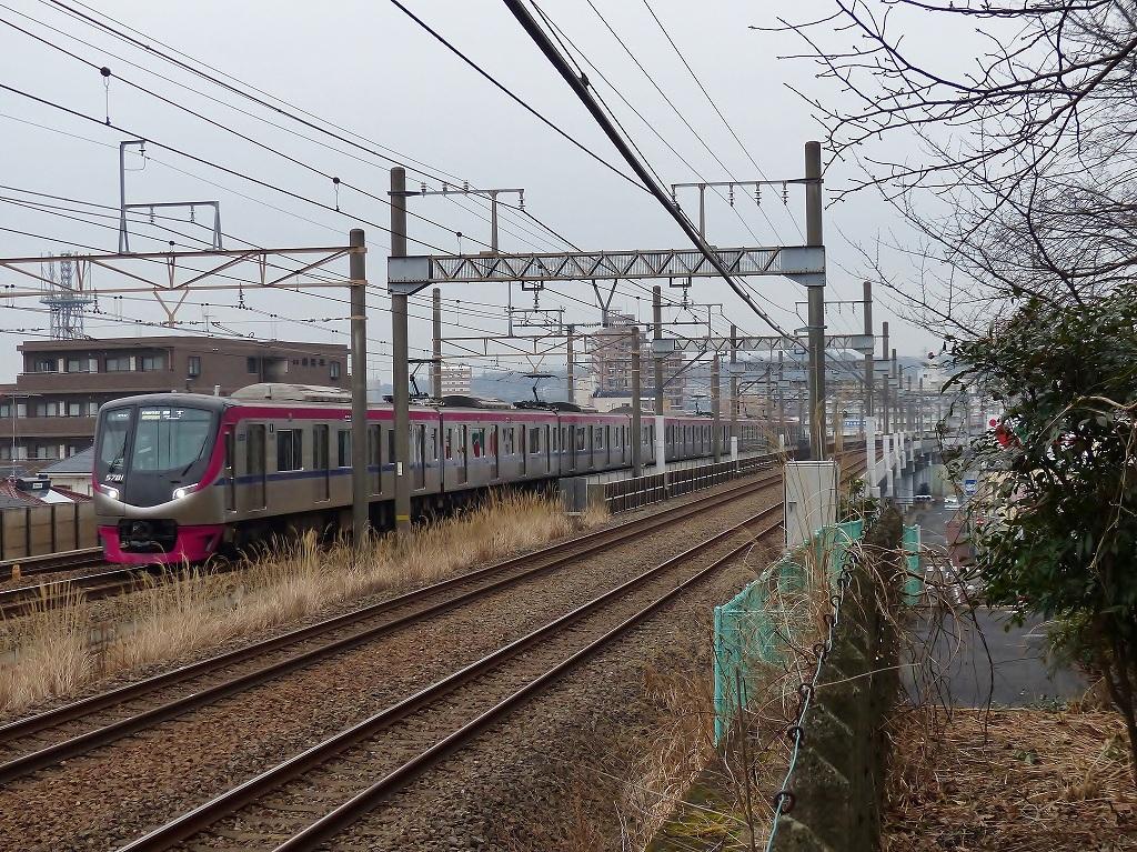 P1450851.jpg
