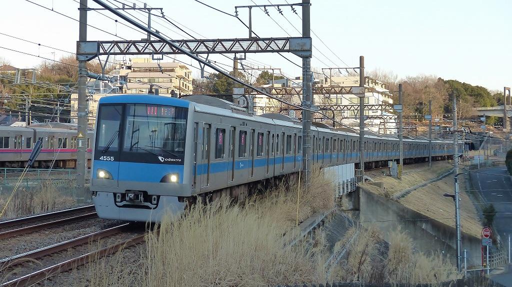 P1460146.jpg