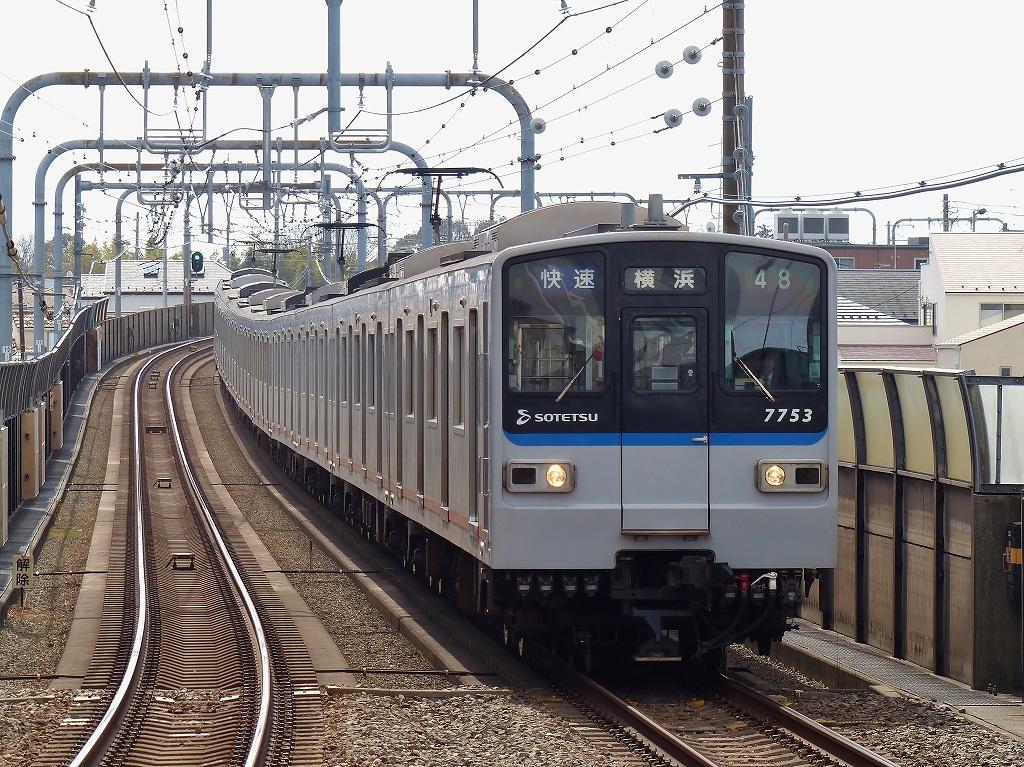P1460165.jpg