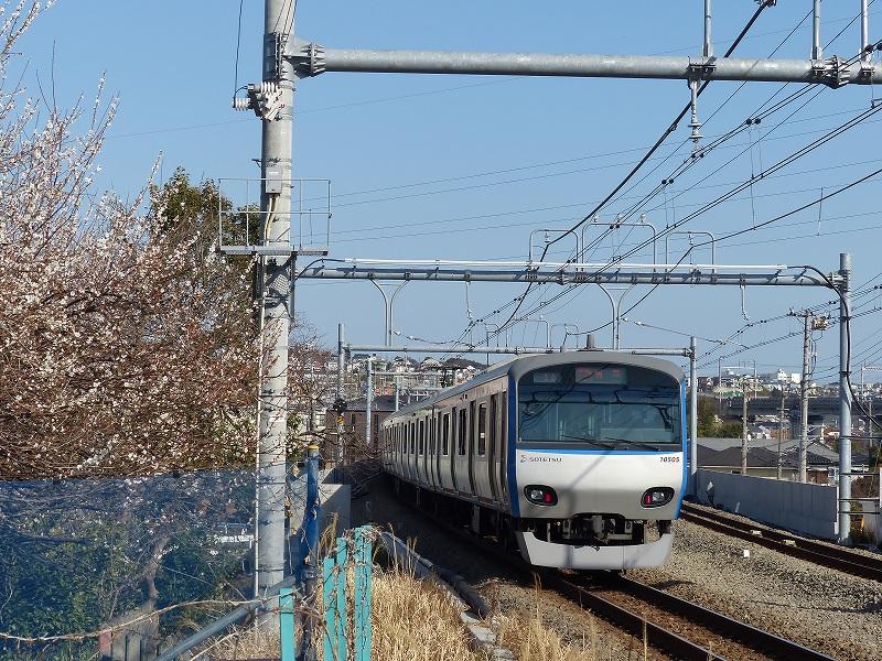 P1460173.jpg